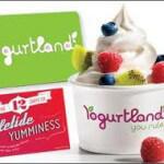 Yogurtland: Where Customers Control Their Flavor Experience
