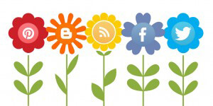 Create a Social Media Profile