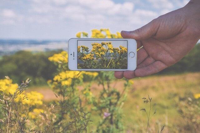 national-parks-social-media