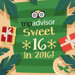 TripAdvisor at 16 – A Look Back at the World's Largest Travel Platform